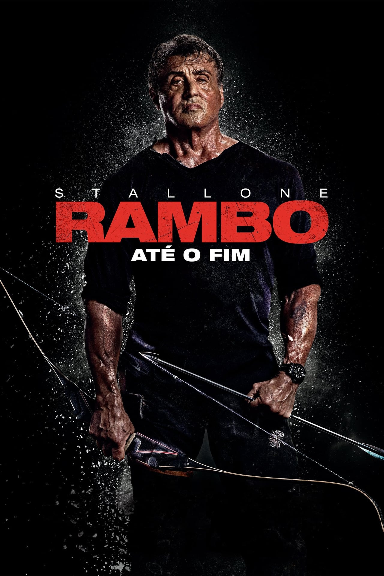 Rambo: Last Blood wiki, synopsis, reviews, watch and download