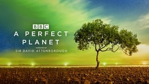 A Perfect Planet images
