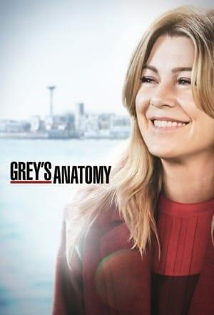 Grey's Anatomy, Season 15 poster 0