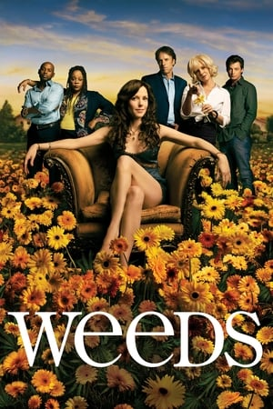 Weeds, The Complete Series posters