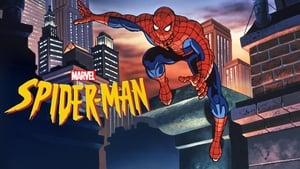 Spider-Man (The New Animated Series), Season 1 image 0