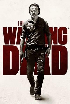 The Walking Dead, Season 10 posters