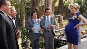 Modern Family, Season 5 - The Wedding (1) image