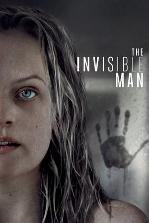 The Invisible Man (2020) poster 1