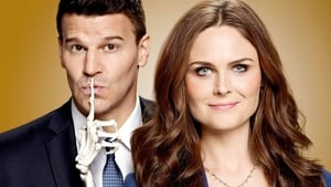 Bones, The Complete Series images