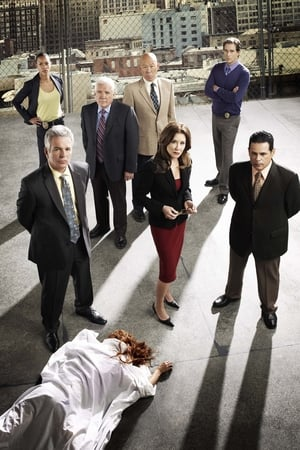 Major Crimes: The Complete Series posters