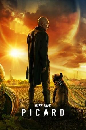 Star Trek: Picard, Season 1 poster 1