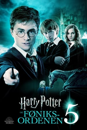 Harry Potter and the Order of the Phoenix poster 4
