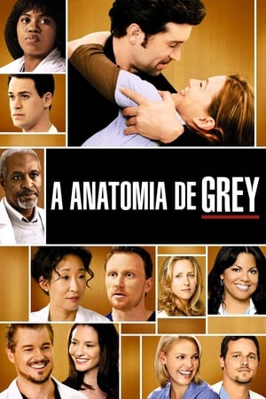 Grey's Anatomy, Season 16 poster 2