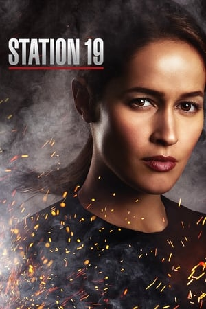 Station 19, Season 4 poster 0