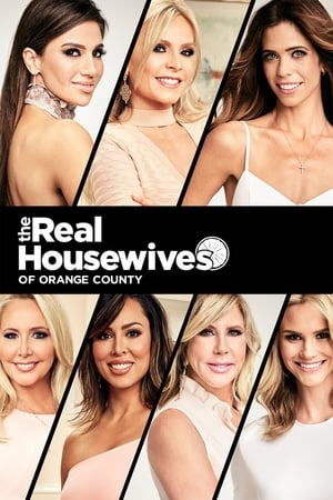 The Real Housewives of Orange County, Season 8 posters