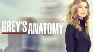 Grey's Anatomy, Season 16 image 0
