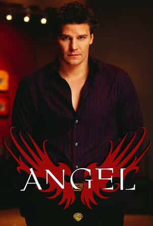 Angel, The Complete Series posters