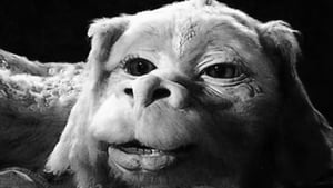 The Neverending Story image 1