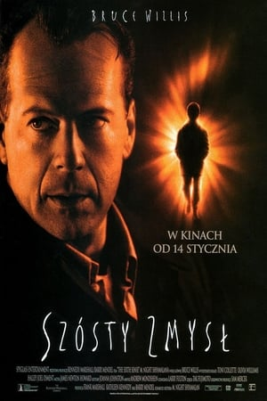 The Sixth Sense poster 4