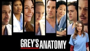 Grey's Anatomy, Season 9 image 3