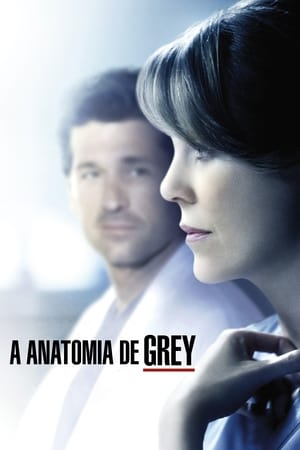 Grey's Anatomy, Season 3 poster 0