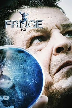 Fringe: The Complete Series posters