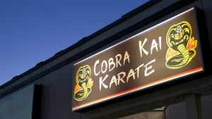 Cobra Kai, Season 1 images