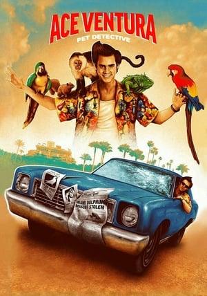 Ace Ventura: Pet Detective poster 1