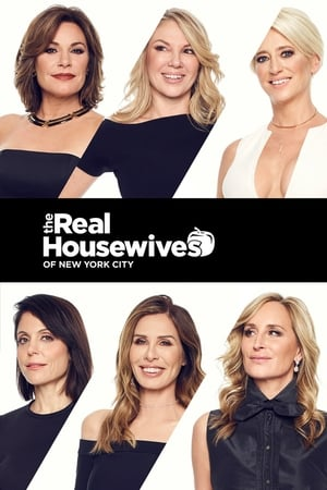 The Real Housewives of New York City, Season 13 poster 2
