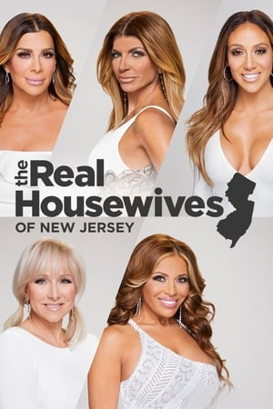 The Real Housewives of New Jersey, Season 11 poster 0