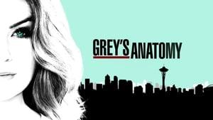 Grey's Anatomy, Season 14 image 1