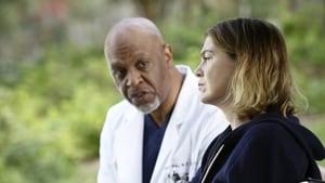 Grey's Anatomy, Season 12 - The Sound of Silence image