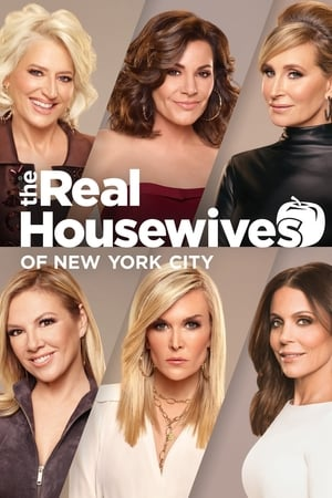 The Real Housewives of New York City, Season 13 poster 1