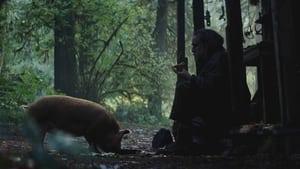 Pig image 6