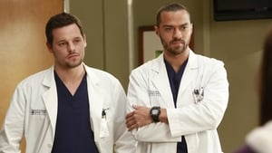Grey's Anatomy, Season 9 - The Face of Change image