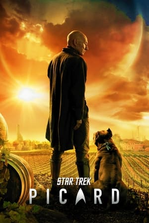 Star Trek: Picard, Season 1 poster 3