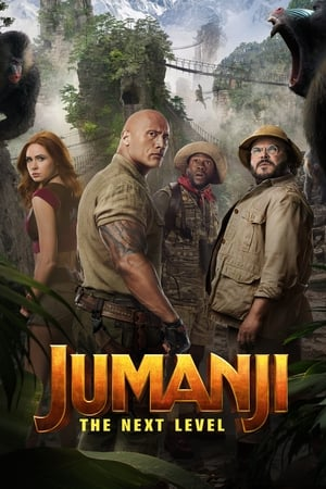 Jumanji: The Next Level posters
