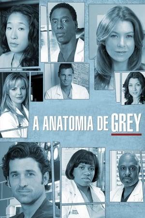 Grey's Anatomy, Season 3 poster 2