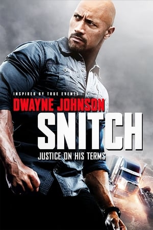 Snitch movie posters