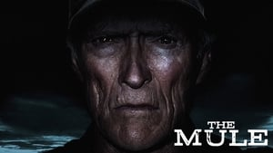 The Mule (2018) image 3
