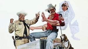 Smokey and the Bandit movie images