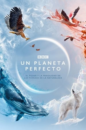 A Perfect Planet posters