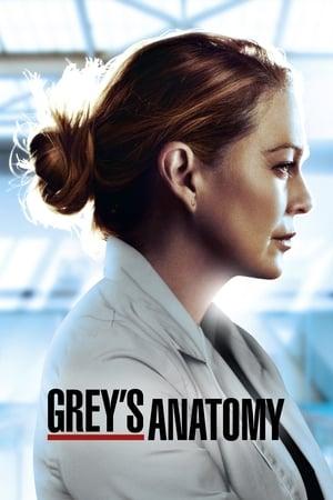 Grey's Anatomy, Season 12 poster 1