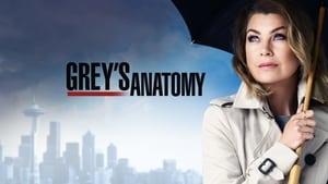 Grey's Anatomy, Season 14 image 2