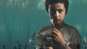 The Sinner, Season 3 images