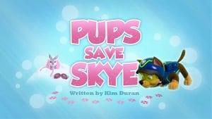 PAW Patrol, Vol. 2 - Pups Save Skye image