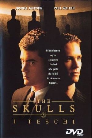 The Skulls poster 3