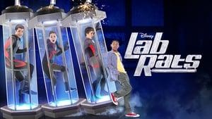 Lab Rats, Vol. 4 image 1