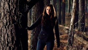 The Vampire Diaries, Season 1 - Let the Right One In image