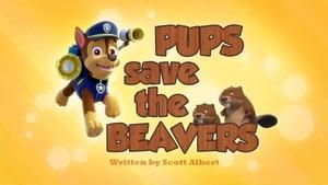 PAW Patrol, Vol. 2 - Pups Save the Beavers image