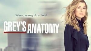 Grey's Anatomy, Season 14 image 0