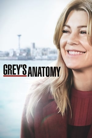 Grey's Anatomy, Season 11 poster 3