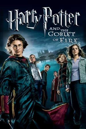 Harry Potter and the Goblet of Fire movie posters