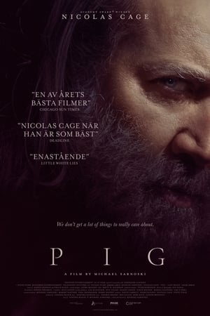 Pig poster 3